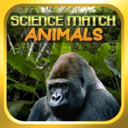 Science Match Animals