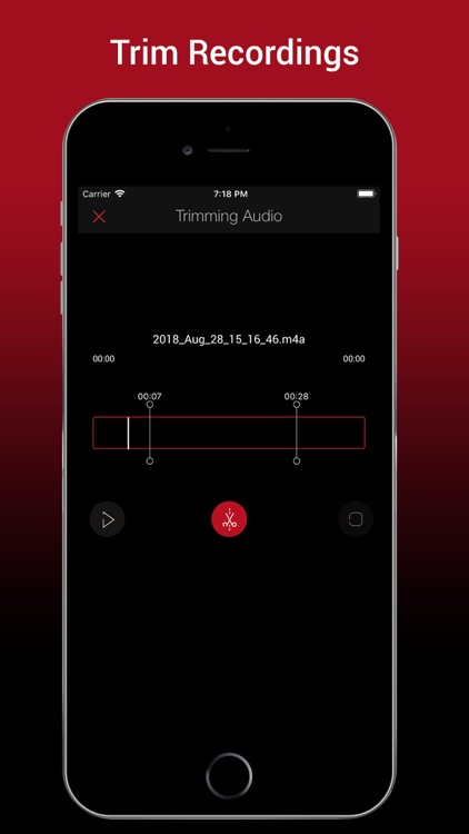 Voice Recorder HD Pro screenshot-1