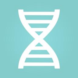 DNA Explorer