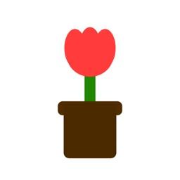 LittlePlant