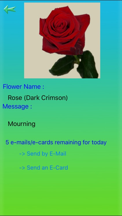 Flowers Language screenshot-2