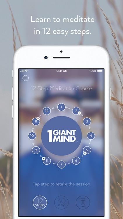 1 Giant Mind: Learn Meditation
