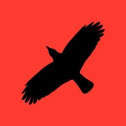 Condor Operations - Red