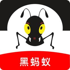 智慧黑蚂蚁科技