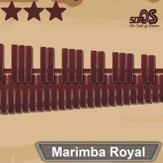 Activities of Marimba Royal