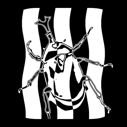 StripeImager
