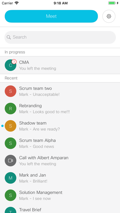Cisco Meeting ScreenShot0