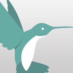 iOffice Hummingbird