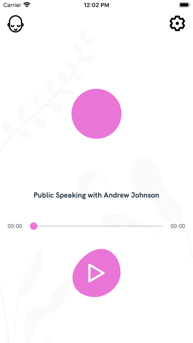 Public Speaking With Aj review screenshots