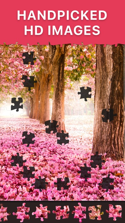 Daily Jigsaw Puzzles