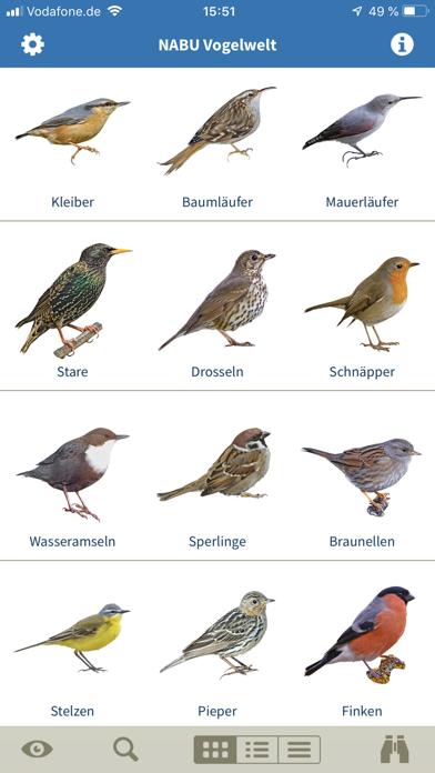 Vogelarten kennenlernen und bestimmen