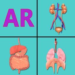 AR Incredible human body