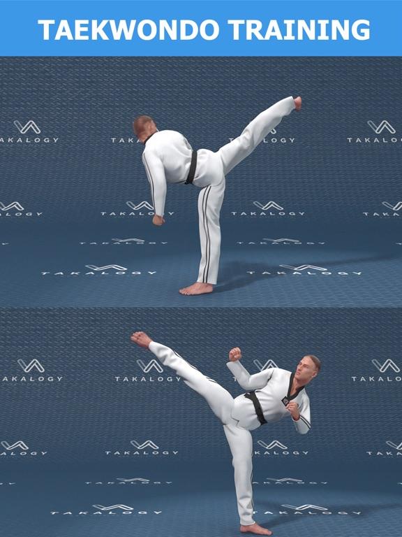 Mastering Taekwondo