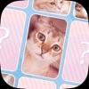 可愛い猫のメモリーマッチパズル! - iPhoneアプリ