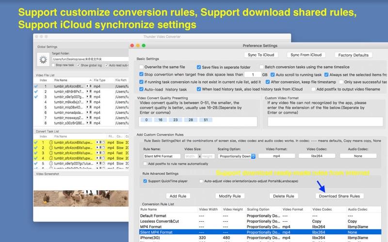 Thunder Video Converter Pro скриншот программы 3