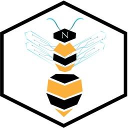 Bee Nexus