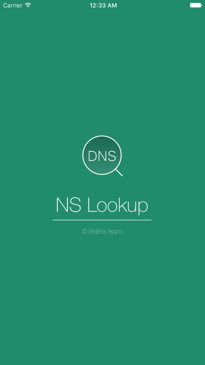 NSLookup Plus screenshot-0