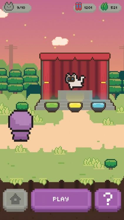 Let's Get the Cats: Cute Cats screenshot-9
