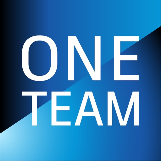 Autodesk One Team