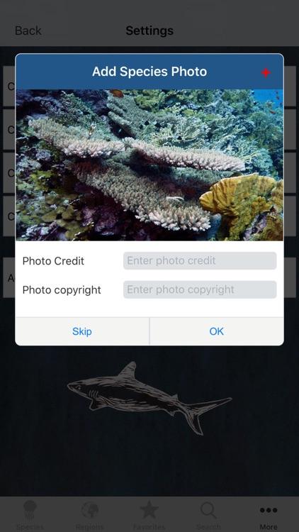 Reef Life screenshot-8