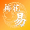 梅花易数专业版 - iPhoneアプリ