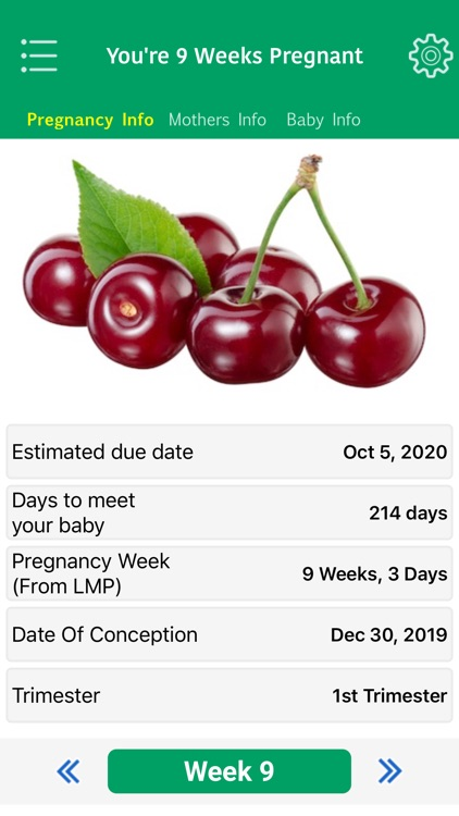 Pregnancy Tracker & Assistant