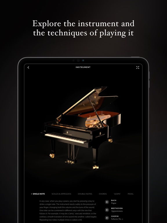 The Art of Piano screenshot #5