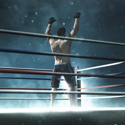 Summer Games Boxing