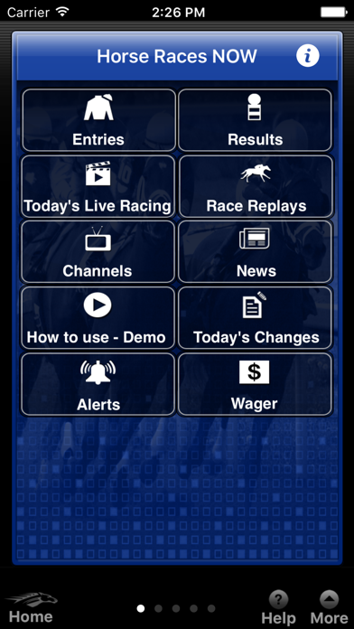Horse Races Now screenshot