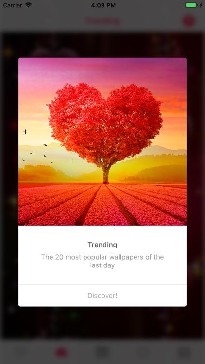 Love Wallpapers ° screenshot-5