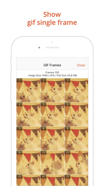GIF Viewer - The GIF Album screenshot-4