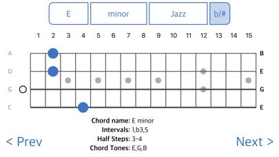 ChordFinder for Tenor Banjo screenshot two