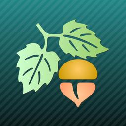 Ícone do app Focus on Plant