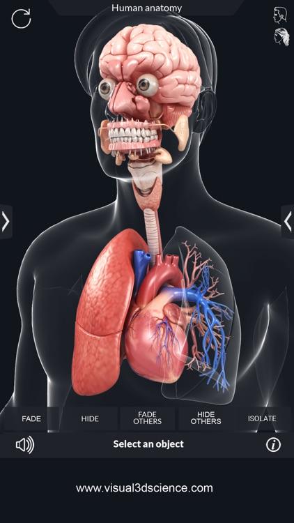 My Organs Anatomy screenshot-4