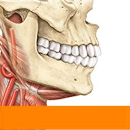 Ícone do app Sobotta Anatomy Atlas