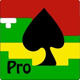 BlackJack 101 Pro Perfect Play