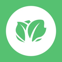 Kabbage: Small Business Loans