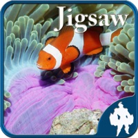 Codes for Sea life Jigsaw Puzzles -Titan Hack