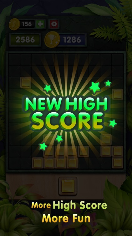 10s Amazing! Wood Block Puzzle screenshot-3
