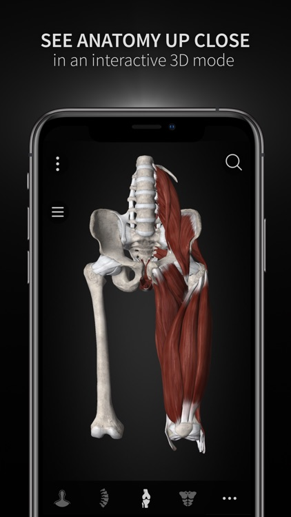 Anatomyka screenshot-5