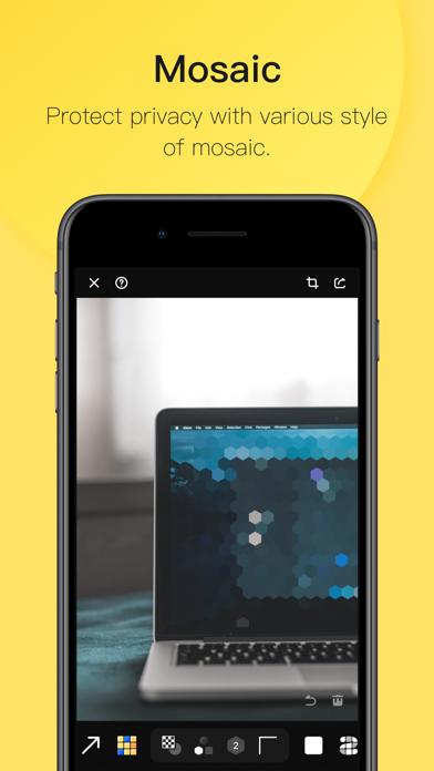 Pico · Image Annotation screenshot three