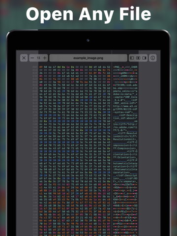 Hexer — Hex File Viewer - náhled