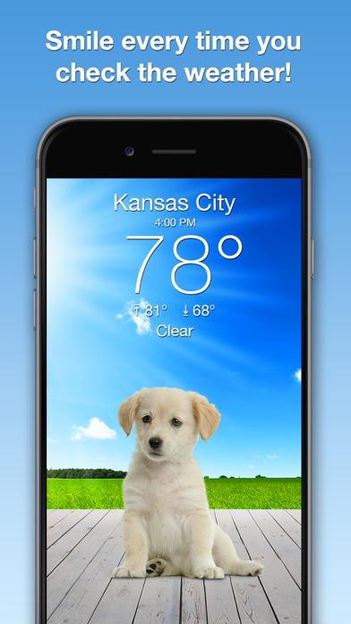 Weather Puppy Forecast + Radar Screenshot