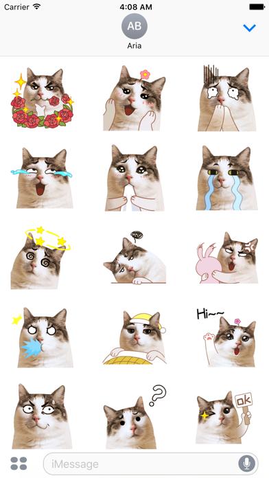 CatMoji Animated Humorous Cat screenshot 2