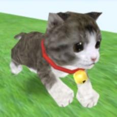 Activities of Cat Run - kitten running game