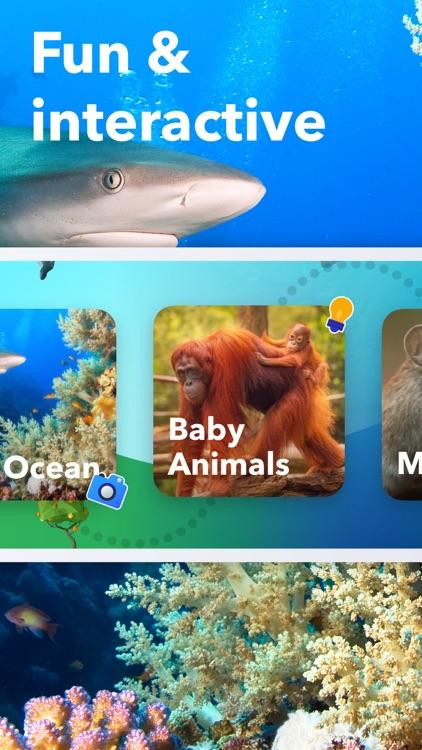 Animal Life - Science for Kids