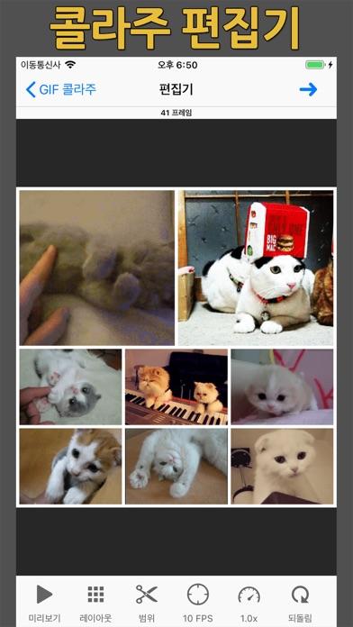 다운로드 GIF 토스터 - 움짤 만들기 Android 용