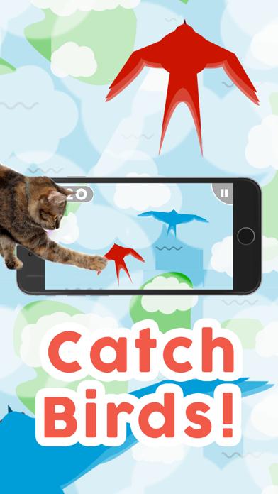 Herunterladen Games for Cats! für Android
