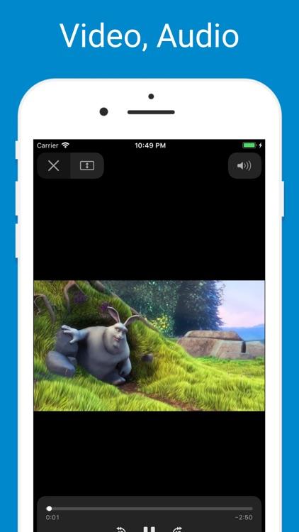 Browser & Offline File Storage screenshot-3