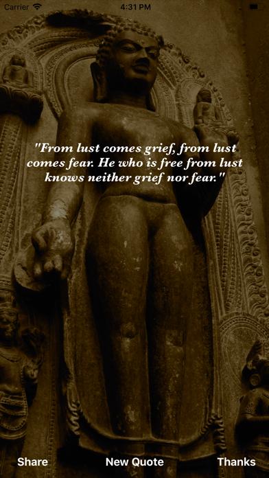 Buddha Wisdom screenshot three